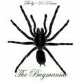 Arachnidae : Cyriopagopus minax